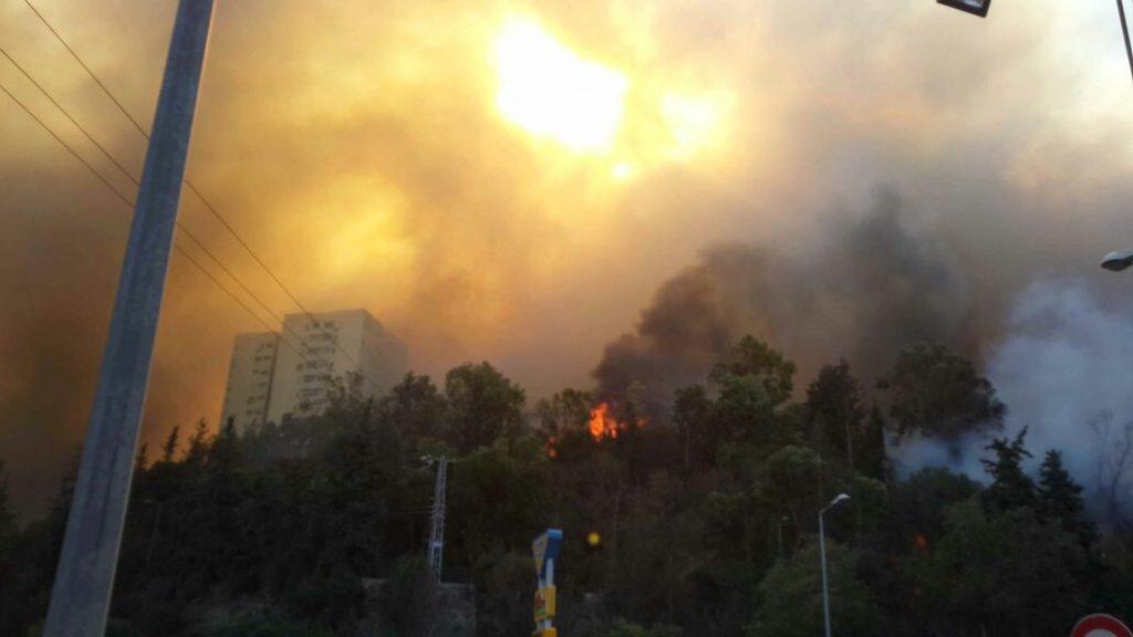 """אינתיפאדת אש. הצתות ברחבי יו""""ש. היישוב נווה צוף חלמיש פונה בשל שריפת ענק."""