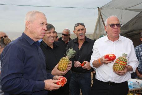 בדרך למליון: תוכנית לקליטת 10,000 תושבים חדשים בבקעת הירדן
