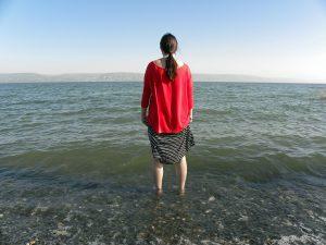 חופשהחופשה או נופש וילה בצפון, בגליל בכנרת או בגולן