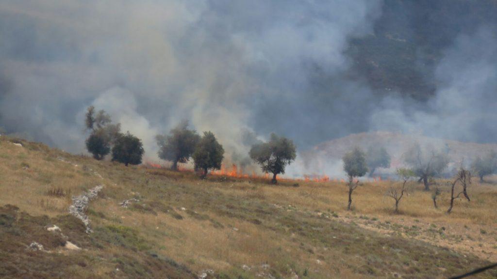 """ערבים מעוריף הציתו אש לכיוון יצהר – קצין מג""""ב חסם את צוותי הכיבוי"""