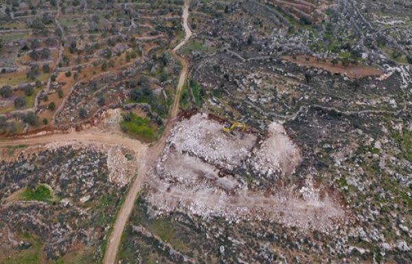 """מיליון עצי זית: כך נכשל המנהל האזרחי בעצירת 'הכיבוש החקלאי' ביו""""ש"""