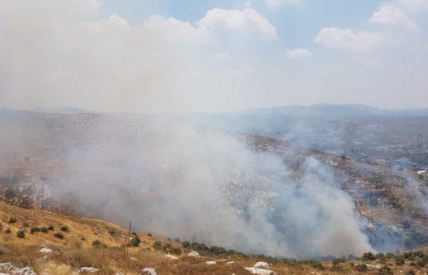 """יו""""ר מועצת יש""""ע חננאל דורני: """"השריפות ביהודה ושומרון הן תוצאה של הצתות מכוונות"""""""