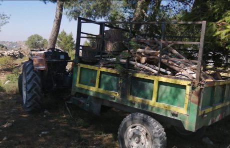 המנהל האזרחי ביצע פעילות אכיפה נגד כורתי עצים ללא היתר סמוך לבת עין