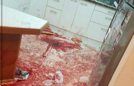 """מזכיר נווה צוף, נועם אהרון:""""הדם על המדרגות של בית סלומון זה הדם של כולנו""""."""