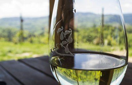 """סוכל החרם בקנדה על היין המיוצר ביקבי יו""""ש שמסומן כ""""תוצרת ישראל"""""""